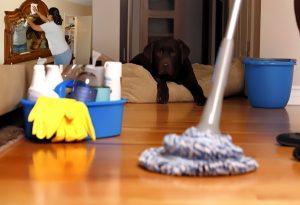 ev temizliğinde pratik bilgiler, ev temizliğine pratik çözümler, ev temizliğine kısa çözümler
