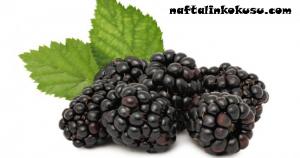 vitamin C, böğürtlen suyu, Böğürtlende mevcut olan mikro besinler
