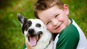hayvan sevgisi aşılama, çocuklara hayvan sevgisi kazandırma