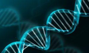 genetik hastalık teşhisi, genetik hastalıkların belirlenmesi, genetik hastalık nedir