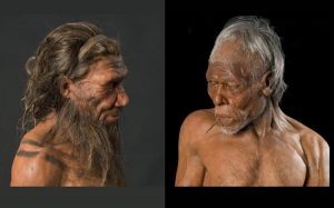 Homo Sapiens nedir, Homo Sapiens ne demek, Homo Sapiens özellikleri